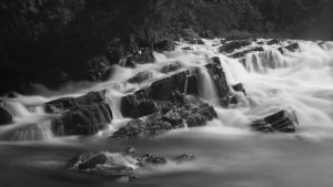 Using Motion in Landscapes