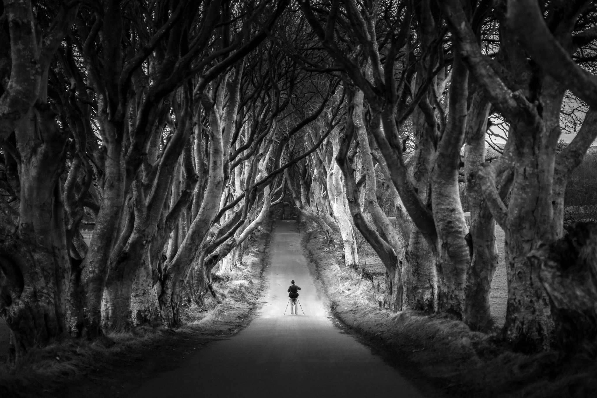 15 Amazing Black White Landscape Photos That Will Leave You In Awe Photzy