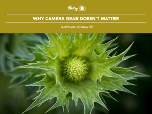 Why Camera Gear Doesn't Matter - Free Quick Guide