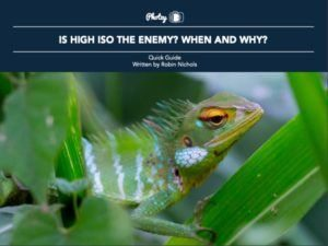 Is High ISO the Enemy? When and Why?