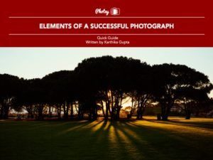 Elements of a Successful Photograph - Free Quick Guide
