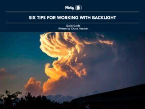 Six Tips for Working with Backlight - Free Quick Guide