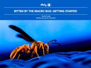 Bitten by the Macro Bug:  Getting Started - Free Quick Guide