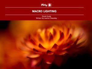 Macro Lighting - Free Quick Guide