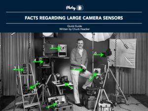 Facts Regarding Large Camera Sensors - Free Quick Guide