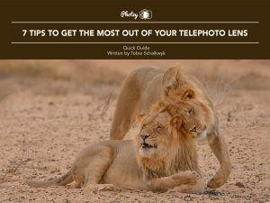 7 Tips to Get the Most Out of Your Telephoto Lens - Free Quick Guide