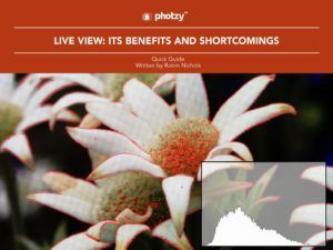Live View: Its Benefits and Shortcomings - Free Quick Guide