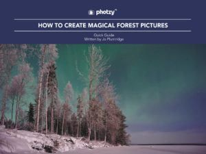 How to Create Magical Forest Pictures - Free Quick Guide