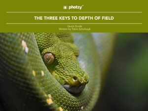 The Three Keys to Depth of Field - Free Quick Guide