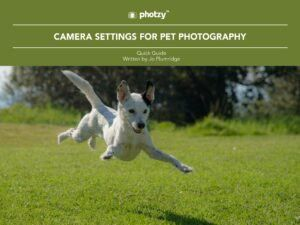 Camera Settings for Pet Photography - Free Quick Guide