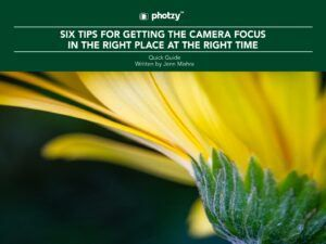 Six Tips for Getting the Camera Focus in the Right Place at the Right Time - Free Quick Guide