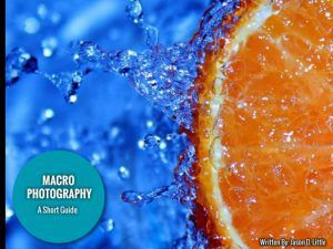 Short Guide to Macro Photography