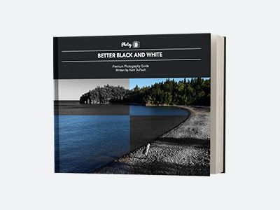 𝗕𝗲𝘁𝘁𝗲𝗿 𝗕𝗹𝗮𝗰𝗸 & 𝗪𝗵𝗶𝘁𝗲 𝗦𝘁𝘂𝗱𝘆 𝗚𝘂𝗶𝗱𝗲: Produce your own dynamic, share-worth B&W images! 95 Pages • 70 Example Images & Diagrams • 9 Key-Lessons • 1 Texture Pack ($80 Value)