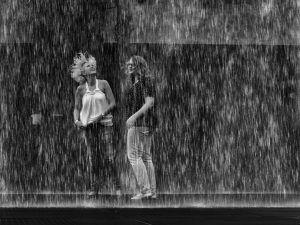 Rainy Day Photography Fun