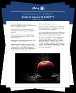 OrdinarytoExtraordinary_CaseStudies_Stack